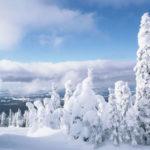 Какая будет зима 2021 года в Башкирии