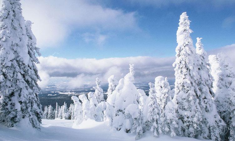Какая будет зима 2022 года в Башкирии