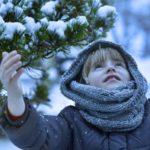 Какая будет зима 2020-2021 года в Украине